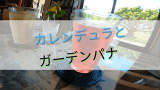 カレンデュラの石鹸の効能が抜群にいい話。石垣島のGarden Pana (ガーデンパナ)も紹介!の画像